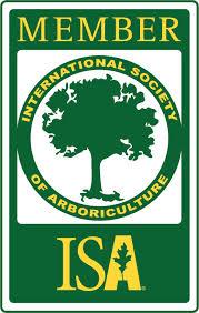 Certifierad arborist