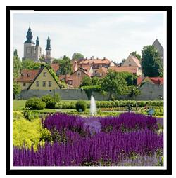 Tradfallning-Gotland-1
