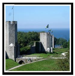 Tradfallning-Gotland-2