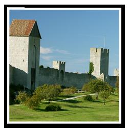 Tradfallning-Gotland-3