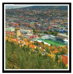 Tradfallning-Sundsvall-3
