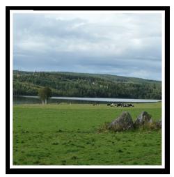 Tradfallning-ornskoldsvik-3