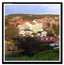 Tradfallning-varberg-1