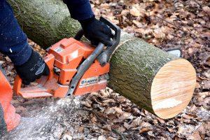 cutting-wood-2146507_1920