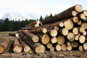 wood-1613940_1920